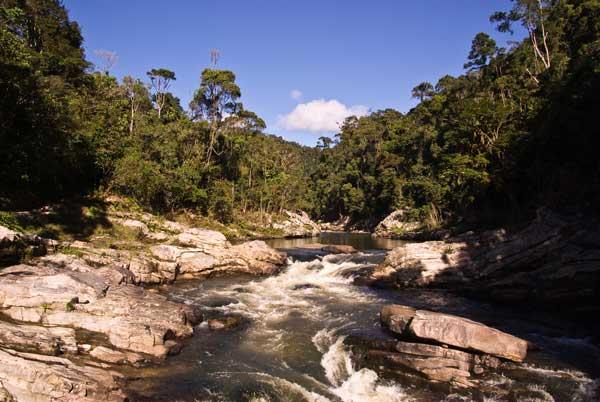 River flowing through Ranomafana National Park